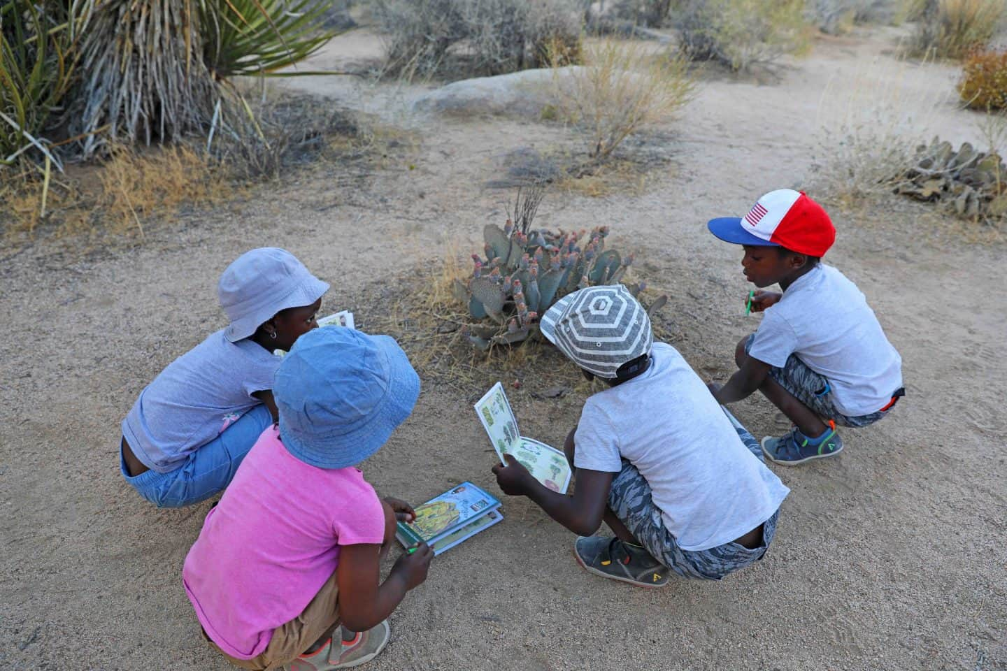 Joshua Tree National Park With Kids: A Family Hiking Guide