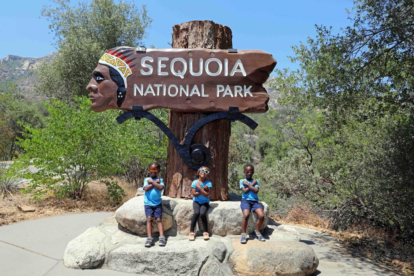 Family Trip To Sequoia National Park With Kids