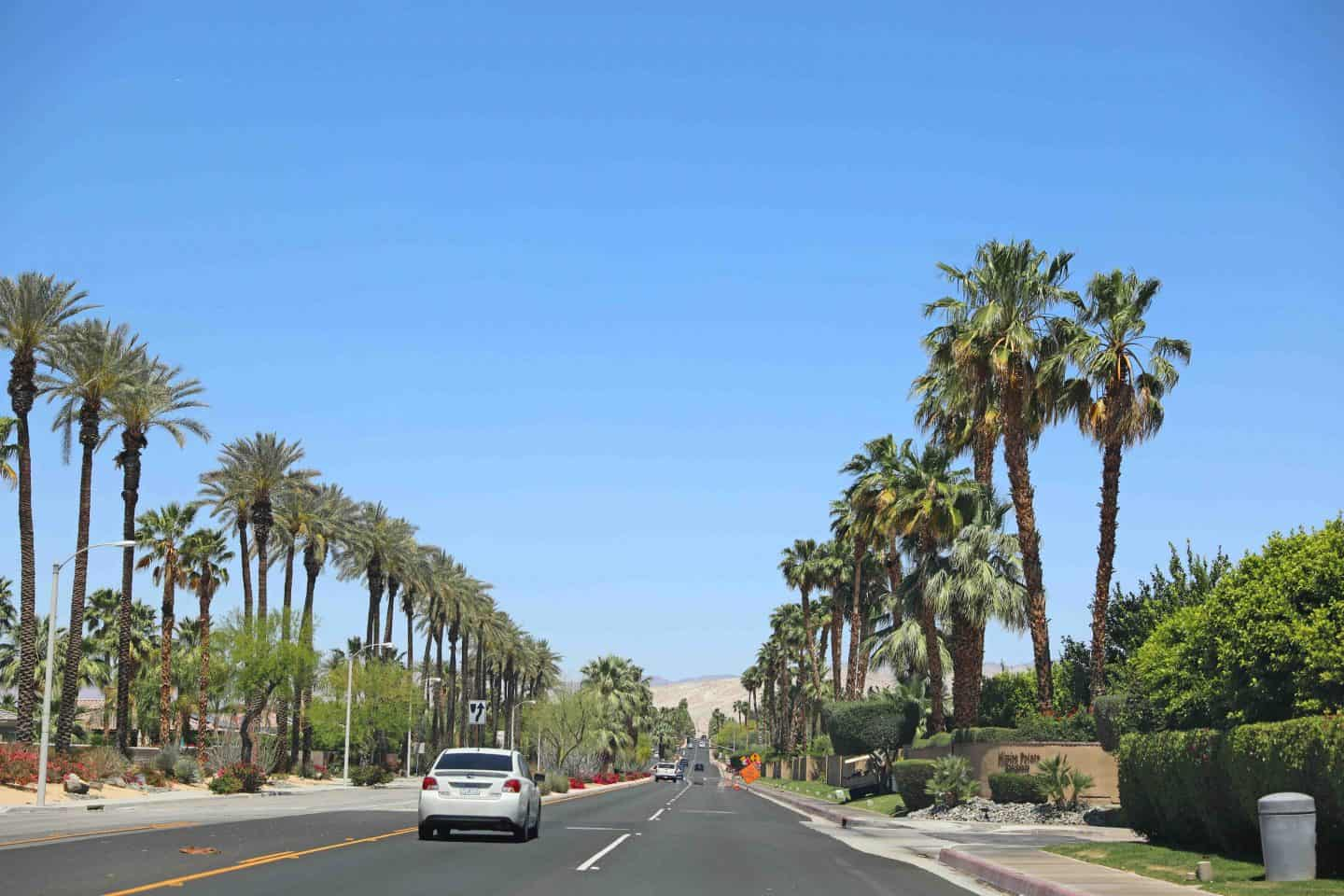how to vacation in palm springs with kids 1