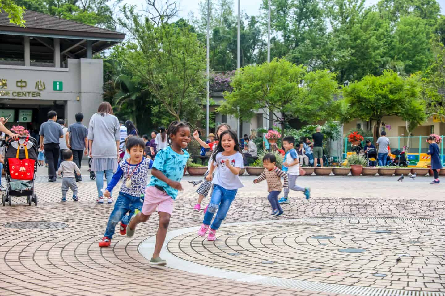 black kids enjoying at the Taipei Zoo