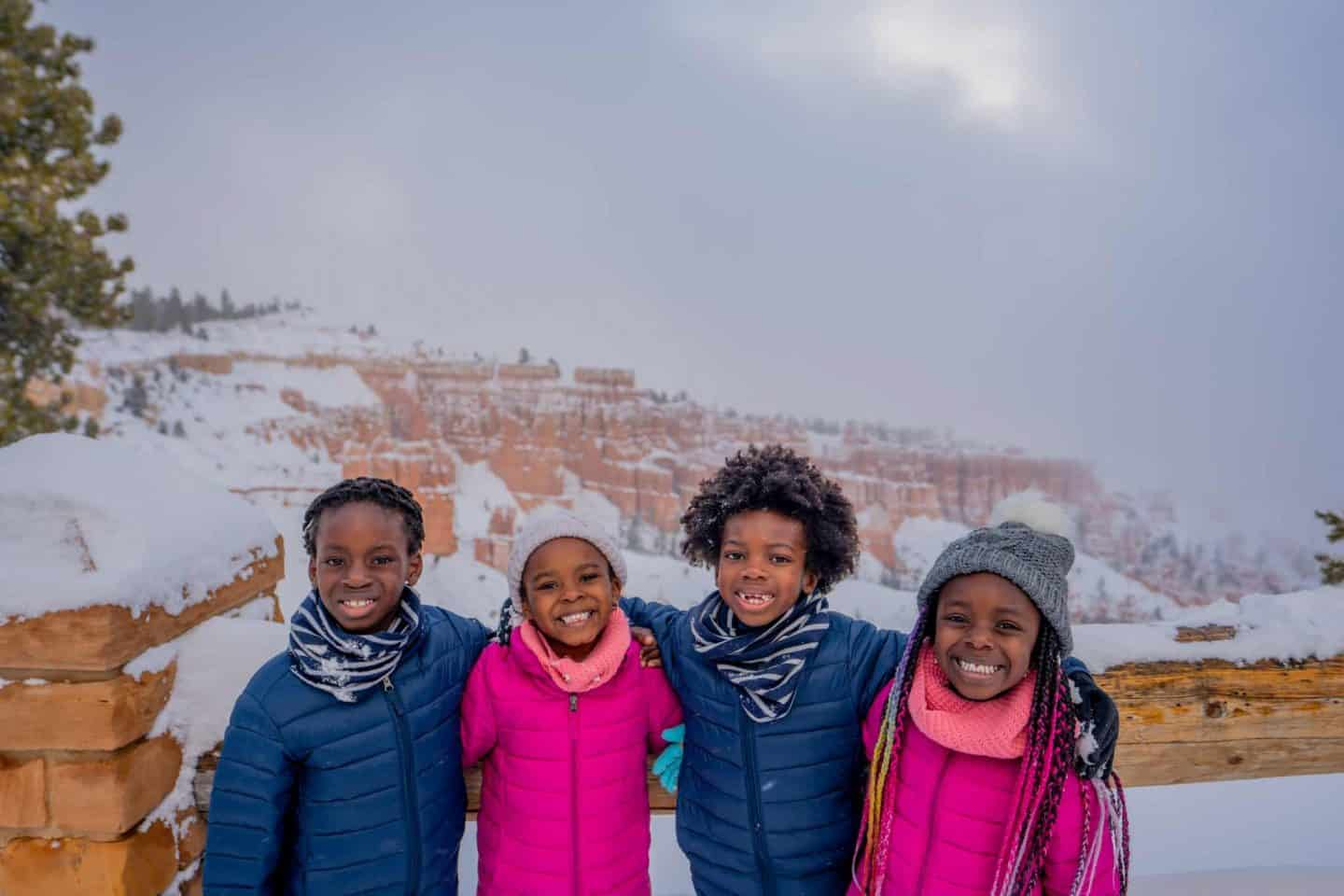 Four kids standing in front of a great snowy view.